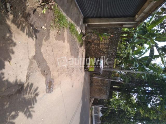 Commercial property for Rent - 1/2