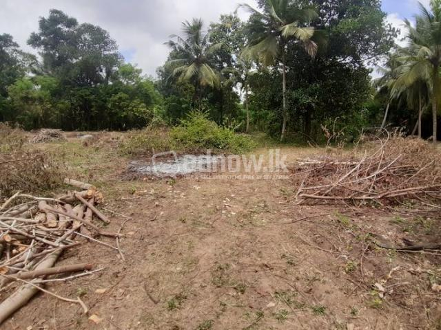Land For Sale Thambagalla - Chilaw - 1/5