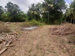 Land For Sale Thambagalla - Chilaw
