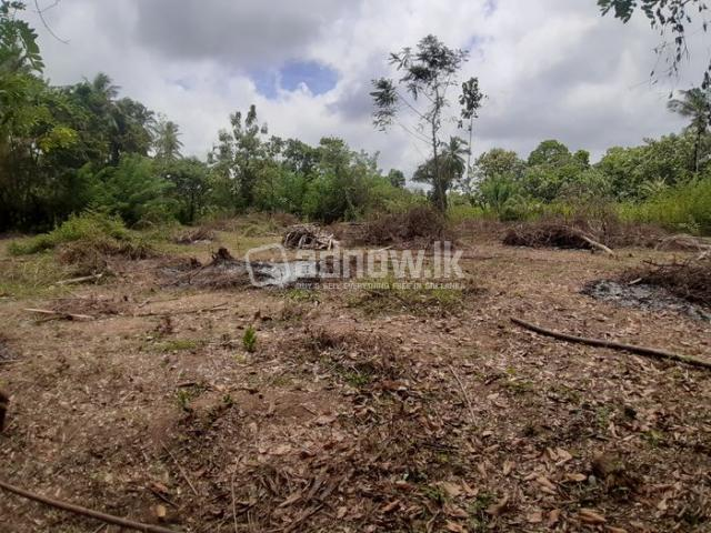 Land For Sale Thambagalla - Chilaw - 4/5